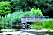 Pier Digital Art - Summer Pond by Bill Cannon