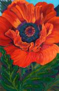 Anne Nye Acrylic Prints - Summer Poppy Acrylic Print by Anne Nye