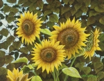 Sunflower Paintings - Summer Quintet by Marc Dmytryshyn