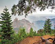 North Rim Framed Prints - Summer Rain Framed Print by Images of David Costa