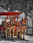 Carriage Photo Prints - Summer Ride Print by Evelina Kremsdorf