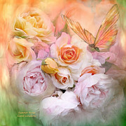 Butterfly Print Posters - Summer Roses Poster by Carol Cavalaris
