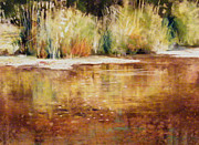 Nature Study Pastels - Summer Shores by Tom Christopher