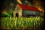 Red Roofed Barn Digital Art Posters - Summer Storm Poster by Lois Bryan