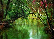 Tree Over Water Prints - Summer stream Print by Gun Legler