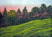 Meadow Flowers Originals - Summer Sunset by Frank Wilson