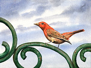 Wing Paintings - Summer Tanager by Sam Sidders