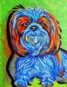 Dog Paintings - Summer Time Doggie by Pam Utton