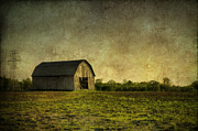 Wood - Summers Barn by Joel Witmeyer