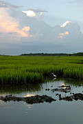 Huntington Prints - Summertime Marsh Print by Suzanne Gaff