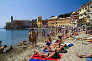 Colorful Village Posters - Sun bathers in Sestri Levante in the Italian Riviera in Liguria Italy Poster by David Smith