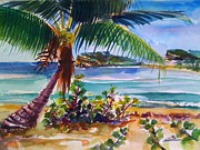 Puerto Rico Paintings - Sun Bay Vieques Puerto Rico by Barbara Richert