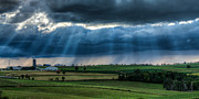 Matt Dobson Metal Prints - Sun Beams over a Dairy Farm Metal Print by Matt Dobson