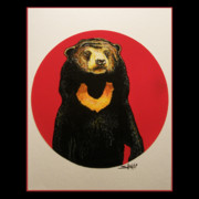 Animal Art Framed Prints - Sun Bear Framed Print by John Shook