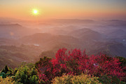 Sun Burst, Cherry Blossoms And Mountain Layers Print by Samyaoo