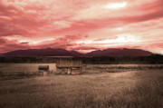 Montana Digital Art - Sun Down by Vicki Lea Eggen