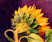 Linda Krukar Metal Prints - Sun Flower Metal Print by Linda Krukar