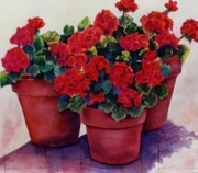 Potted Florals Framed Prints - Sun-Kissed Geraniums Framed Print by Ann Peck