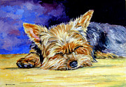 Puppies Paintings - Sun Light Snoozer - Yorkshire Terrier by Lyn Cook