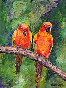 Lovebird Framed Prints - Sun Parakeets Framed Print by Arline Wagner