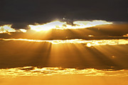 Sun Posters - Sun rays at sunset sky Poster by Elena Elisseeva