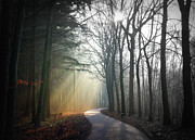 Road Trip Prints - Sun Rays Coming Through Sky Print by Bob Van Den Berg Photography