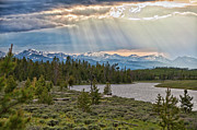 Yellowstone National Park Framed Prints - Sun Rays Filtering Through Clouds Framed Print by Trina Dopp Photography