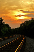 Railroad Stations Prints - Sun Reflecting on Tracks Print by Benanne Stiens