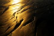 Ventura California Photos - Sun Reflects On Patterns In The Sand by Stacy Gold