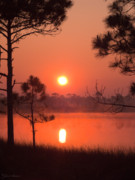 Grayton Beach Posters - Sun Rise at Red Lake Grayton Beach State Park Florida Poster by John Harmon