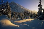Snow Drifts Prints - Sun Setting Behind Trees And Mountain Print by Mike Grandmailson