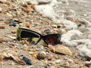 Sun Shades Prints - Sun Shades and Sea Shells Print by Al Powell Photography USA