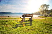 Park Benches Framed Prints - Sunbeam Bench Framed Print by Emily Stauring