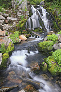 Mt Rainier Stream Framed Prints - Sunbeam Creek Framed Print by Winston Rockwell
