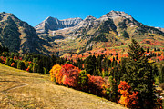 Fall Colors Photography Posters - Sundance Fall Mountain Poster by La Rae  Roberts