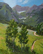 Mountain Bike Paintings - Sundance Mountain Bike Trail by Stephen Bartholomew