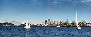 Sydney Skyline Art - Sunday Afternoon by Barnaby Chambers