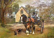 Kelpie Framed Prints - Sunday Driver Framed Print by Trudi Simmonds