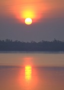 Sun River Prints - Sunderbans Sunrise Print by Copyright Wild Vanilla