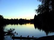 Sundown At Lost Lagoon Print by Will Borden