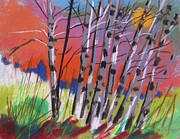 Signed Drawings - Sundown White Birches by John  Williams