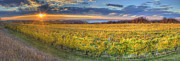 Traverse City Prints - Sunet from Old Mission Print by Twenty Two North Photography
