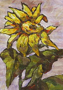 Sunflower Paintings - Sunflower 5 by Sandy Tracey