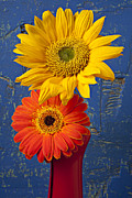 Red Vase Acrylic Prints - Sunflower and Mum Acrylic Print by Garry Gay
