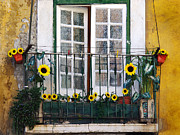 Balcony Framed Prints - Sunflower balcony Framed Print by Carlos Caetano