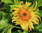 Sunflower Paintings - Sunflower by Chris Steinken