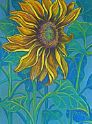Flower Gardens Pastels Prints - Sunflower Drawing in Pastel Print by Deborah Willard