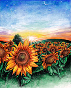 Sunflowers Drawings - Sunflower Field by Callie Fink