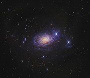 Spiral Galaxy Posters - Sunflower Galaxy Poster by R Jay GaBany