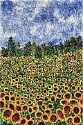 Sunflower Paintings - Sunflower Galaxy by Thom Glace